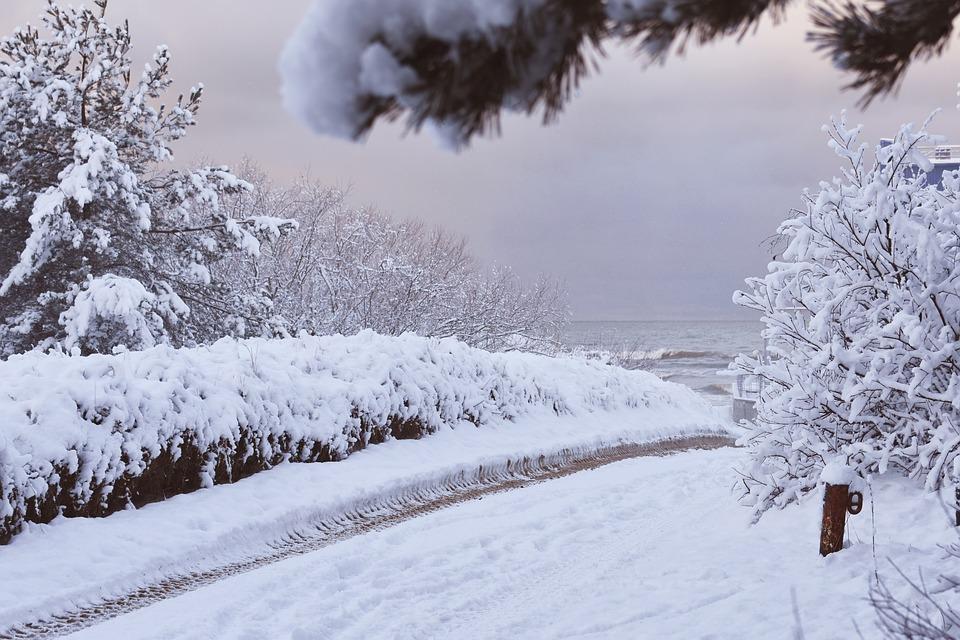Inverno na Zona Temperada